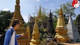 Phân Tích Phong Thủy 5 Ngôi Mộ đẹp nhất Việt Nam và Tầm Long Điểm Huyệt Phong Thủy Dãy Núi Thất Sơn