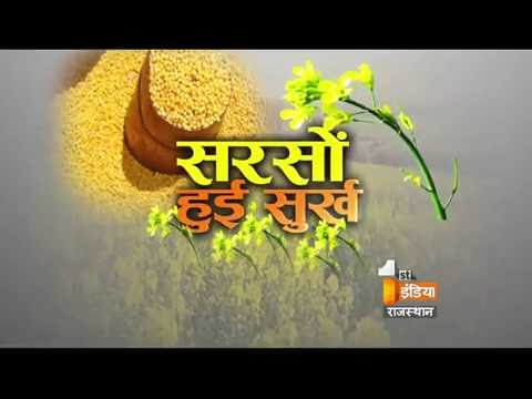 Production of Mustard   Bajar First   Part- 2    First India News