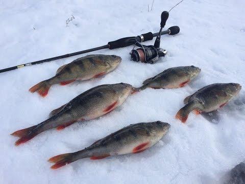 Рыбалка на спиннинг зимой от Михалыча