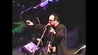 Watch Elvis Costello 15 Petals video