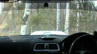 Tree cut in gravel rally N4 г.Хабаровск - Impreza WRX STI GDB