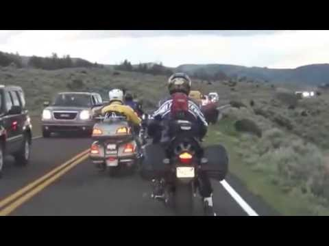 Bison Chases Motorcycle at Yellowstone  July 2012