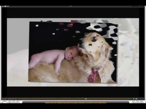 El Mejor Programa para hacer videos con imagenes música videos Tutorial PROSHOW GOLD