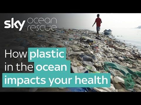 Report: How plastic in the Ocean impacts your health | #OceanRescue