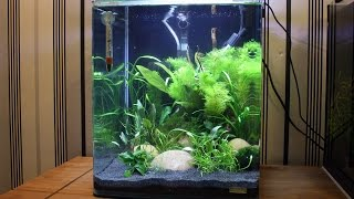 Dennerle Nano Cube Shrimp Tank 30 Litres