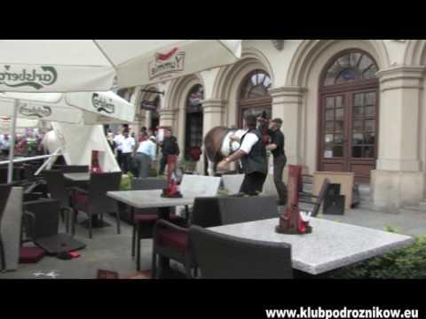 Konie Staranowały Ludzi Na Ogródku Na Rynku W Krakowie