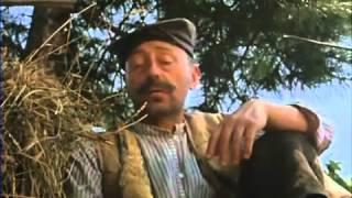 Gospodin na jedan dan (1983)
