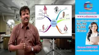 Sense Organs || 9th Class Biology