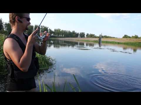 рыбалка на суре ниже пензы