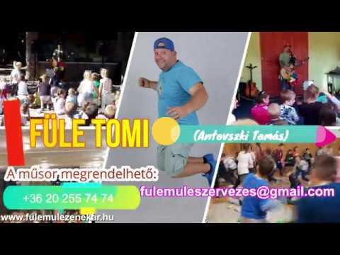 Füle Tomi gyermekműsora Fülemüle Zenekar ovi, óvoda, alsós műsor gyerekműsor interaktív gyermekműsor
