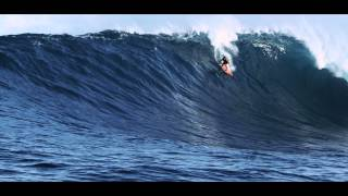 How Surfer Albee Layer Confronts Jaws