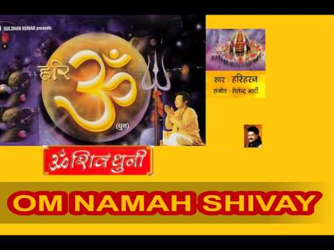 Om Namah Shivay Dhun By Hariharan I Full Audio Song Juke Box video
