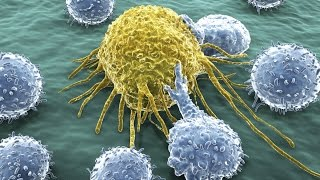 Cancer Is More Bad Luck Than Bad Genes - New Study