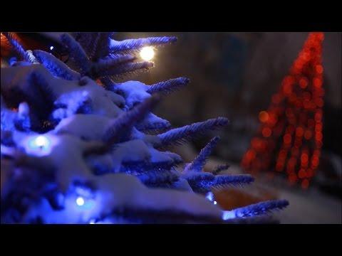 Коридор - Новогодняя