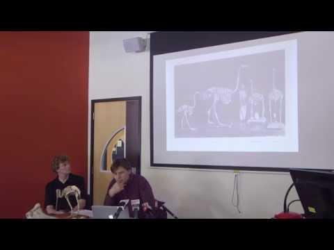 New theory on kiwi origins: a seminar by Professor Alan Cooper