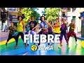 "Lagu ""FIEBRE"" - Ricky Martin / Zumba® choreo by Alix with Chilean team (ft. Wisin, Yandel)"