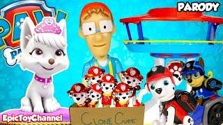 PAW PATROL Nickelodeon Mission Paw & Paw Patrol Sea Patrol Sweetie Clones Marshall Epic Toy Channel