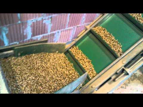 Fabrika peleta, proizvodnja drvenog peleta, Pellet