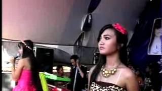 download lagu Novi Feat Elma Cinta Ditolak Dukun Bertindak Sts gratis