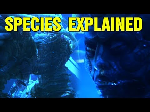 WHAT ARE THE ALIEN HUMAN HYBRIDS? SPECIES MOVIE EXPLAINED