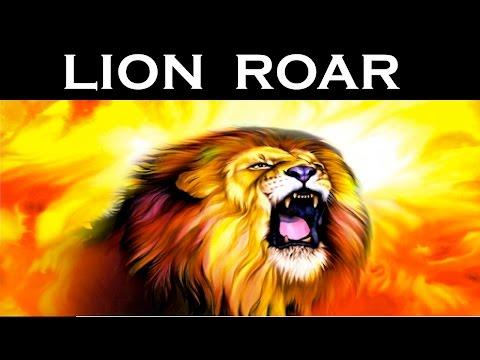 Real Lion Roar Sound Effect  | Latest | HD