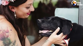 Sick Dog Lives To Make Mom's Wedding | The Dodo