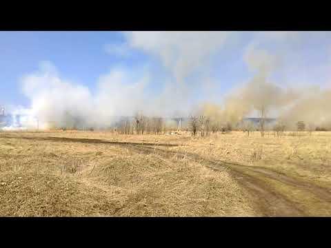 Пожар у гипермаркета Метро, Воронеж