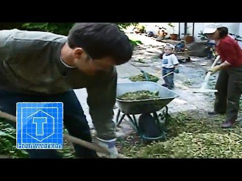 Hecke Schneiden - Profitipps Zum Selbermachen | ToolTown Garten Tipp