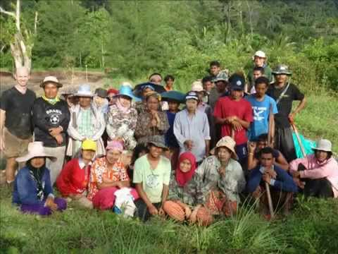 Ecological Mangrove Restoration (EMR) Project by MAP