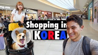 Pet Stores in Korea are AMAZING |BUYING A $650 DOG STROLLER [Korea VLOG]