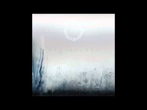Animals As Leaders - Do Not Go Gently