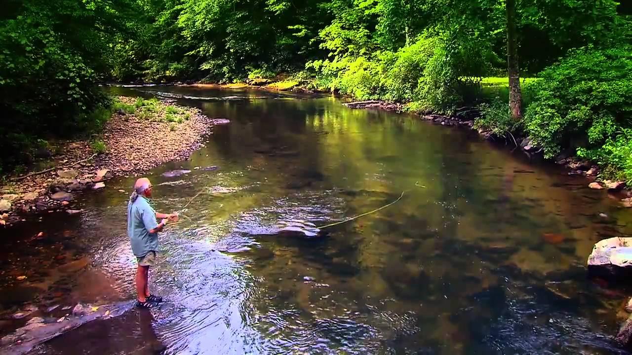 Go fish georgia georgia fishing youtube for Georgia out of state fishing license