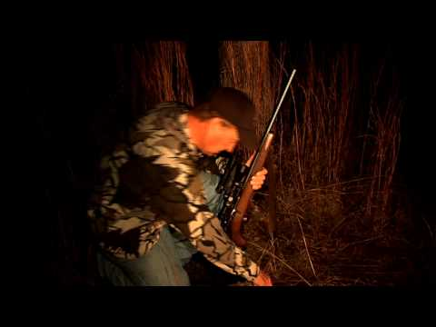 Raccoon Hunting at night with Keith Warren
