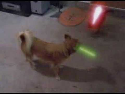 Star Wars - Jedi Dog - The Puppy Menace