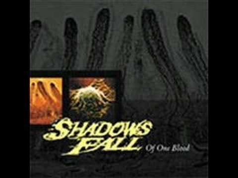 Shadows Fall - Serenity