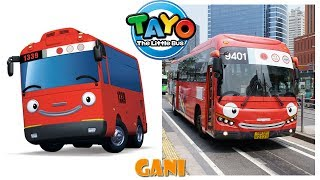 Tayo The Little Bus Characters in Real Life