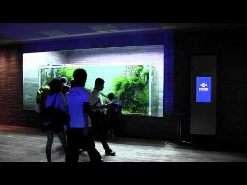 すみだ水族館 自然水景の経時変化 2012年5月25日