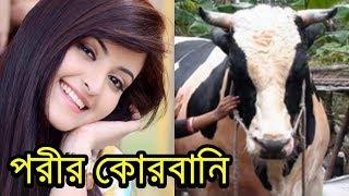 কেন এফডিসিতে কোরবানি দেবেন পরীমনি !!! Pori Moni Qurbani   Bangla News Today