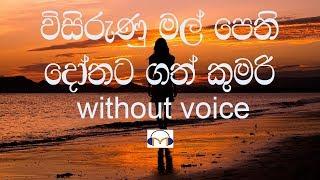 Visirunu Mal Pethi Karaoke (without voice) විසිරුණු මල් පෙති