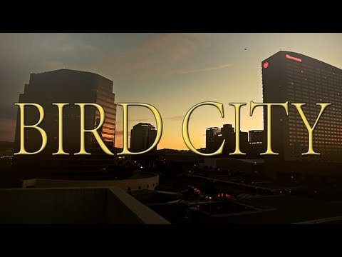 Bird City ft. Yung Wax Rook & Yog Westwood