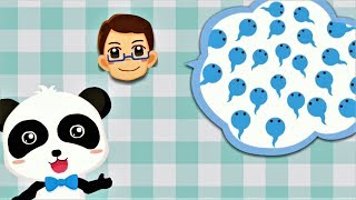 Baby Panda Learn Male and Female - Fun Educational Games For Kids