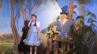 EL MAGO DE OZ MUSICAL