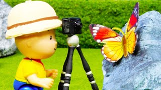 📸 Caillou Photographs Butterflies 🦋 | Funny Animated Kids show | Caillou Stop Motion