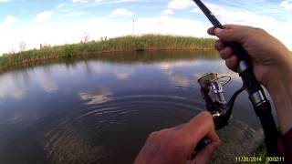 рыбалка в петродолинском