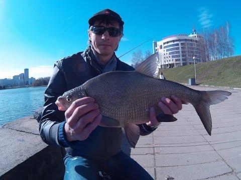 рыбалка в минске и минской области форум