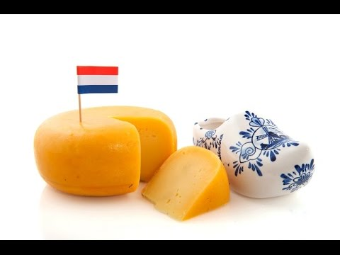 What I Learned From The Dutch