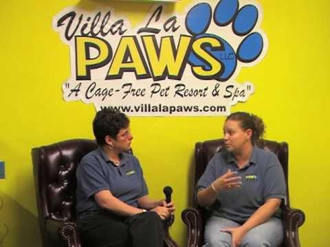 Villa La PAWS - Anal Glands _ Michaela Muncy