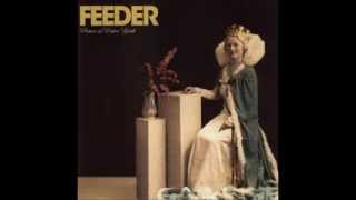 Watch Feeder Picture Of Perfect Youth video