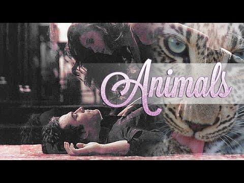 ►Multicouples • Animals { Birthday сollab }