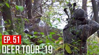 BIG 8 POINTER at 10 YARDS!  - Calling a BUCK away from his doe!